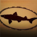 @dogfishhead's profile picture on influence.co