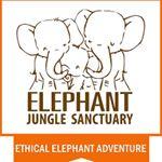 @elephantjsanctuary's profile picture