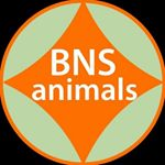@bns_animals's profile picture on influence.co