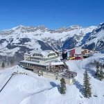 @berghotel_trubsee_titlis's profile picture
