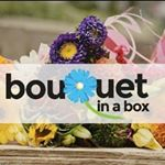 @bouquetinabox's profile picture on influence.co