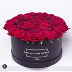 @onemillionrosesofficial's profile picture on influence.co