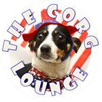 @thecorglounge's profile picture