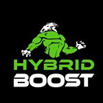 @hybridboost's profile picture