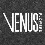 @venusflowersmcr's profile picture on influence.co