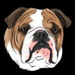 @emmitt_the_bulldog's profile picture on influence.co