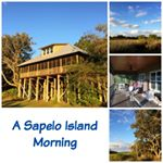 @sapeloislandbirdhouses's profile picture