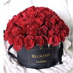 @blooms_by_nadimor's profile picture