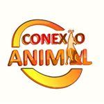 @conexao_animal's profile picture