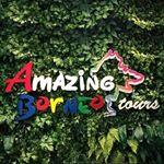 @amazingborneo's profile picture on influence.co