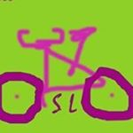 @alternativoslobike's profile picture