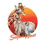 @safariwest's profile picture
