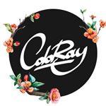 @coloraydecor's profile picture