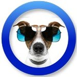 @doggieattitude's profile picture on influence.co