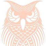 @dayowlrose's profile picture