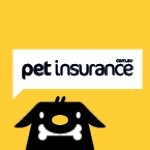 @petinsurance_au's profile picture