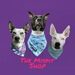 @themispitshop's profile picture