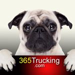@365trucking's profile picture on influence.co