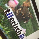 @tiierisch.de's profile picture