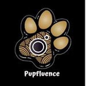 @pupfluence's profile picture