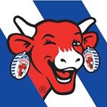@thelaughingcow_uk's profile picture