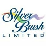 @silverbrushlimited's profile picture