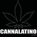 @cannalatino's profile picture