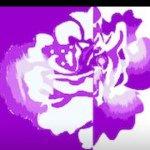 @losachicboutique's profile picture