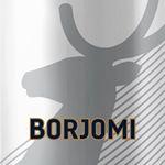 @borjomi_ok's profile picture