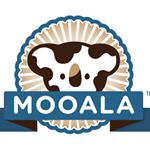 @mooala_koala's profile picture