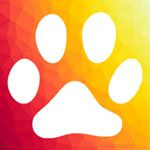 @happycatdeals's profile picture on influence.co