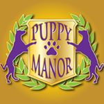 @puppymanor's profile picture on influence.co