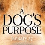 @adogsjourneymovie's profile picture on influence.co