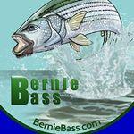 @bernie_bass's Profile Picture