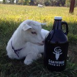 @goathouse_brewing's profile picture