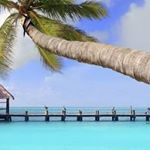 @cancun's profile picture