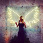 @shawnaellenryan's profile picture