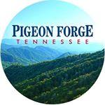@mypigeonforge's profile picture