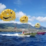 @westmauiparasail's profile picture