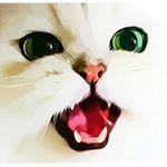 @kitty.kickerz's profile picture