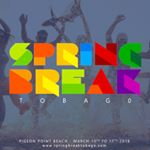 @springbreaktobago's profile picture on influence.co