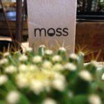 @mossiowacity's profile picture