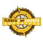 @flores_xp's profile picture on influence.co
