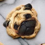 @dogs_infood's profile picture on influence.co