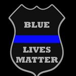 @support.the_blue's profile picture on influence.co