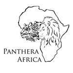 @panthera_africa's profile picture