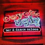 @coyoteugly_vegas's profile picture