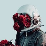 @noalarmsmusic's profile picture on influence.co