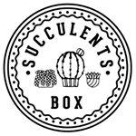 @thesucculentsbox's profile picture