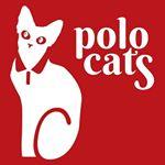 @polocats.ca's profile picture